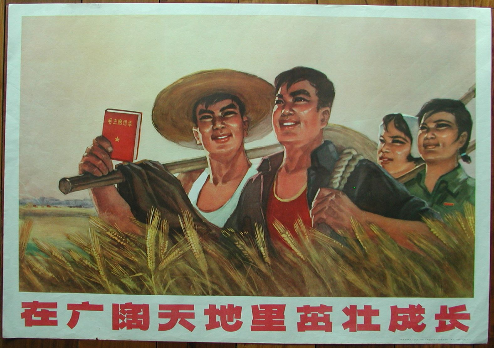 cultural revolution in china The cultural revolution (1966-76) was a mass campaign that transformed government and society in the people's republic of china according to its leader and figurehead mao zedong, the.